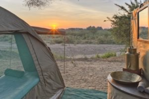 kichaka ruaha fly camp tent view