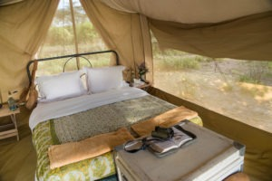 Horse Safari Tent Interior 2
