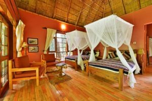primate lodge kibale luxury double