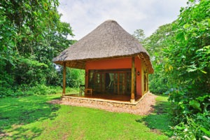primate lodge kibale luxury exterior