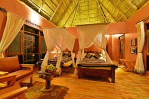 primate lodge kibale twin