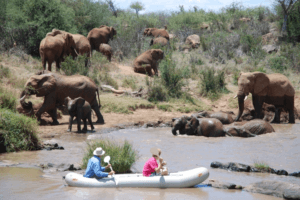 Laikipia Wilderness elephant canoe