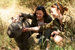 Visiting the baby rhinos