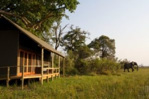 Okavango Delta Accommodation
