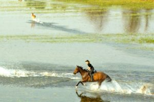 Okavango Delta Canter in Water