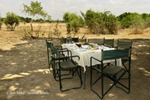 Surefoot Safaris Lunch