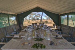 Horse Safari Dinner table