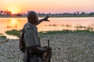 botswana okwa walking safaris okavango delta sunset