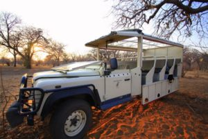Bush Ways Safaris Vehicles 10