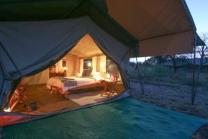 serengeti north wilderness camp tanzania evening