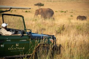 Elewana Sand River Game Drive