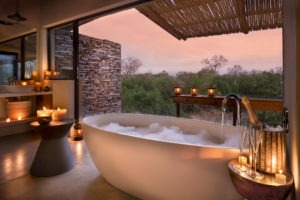 rockfig safari lodge timbavati bathub