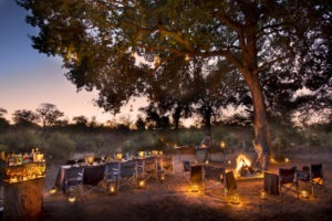 rockfig safari lodge timbavati bush dinner