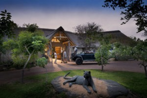 rockfig safari lodge timbavati entrance