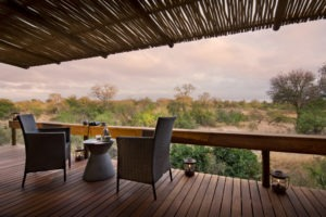 rockfig safari lodge timbavati private deck