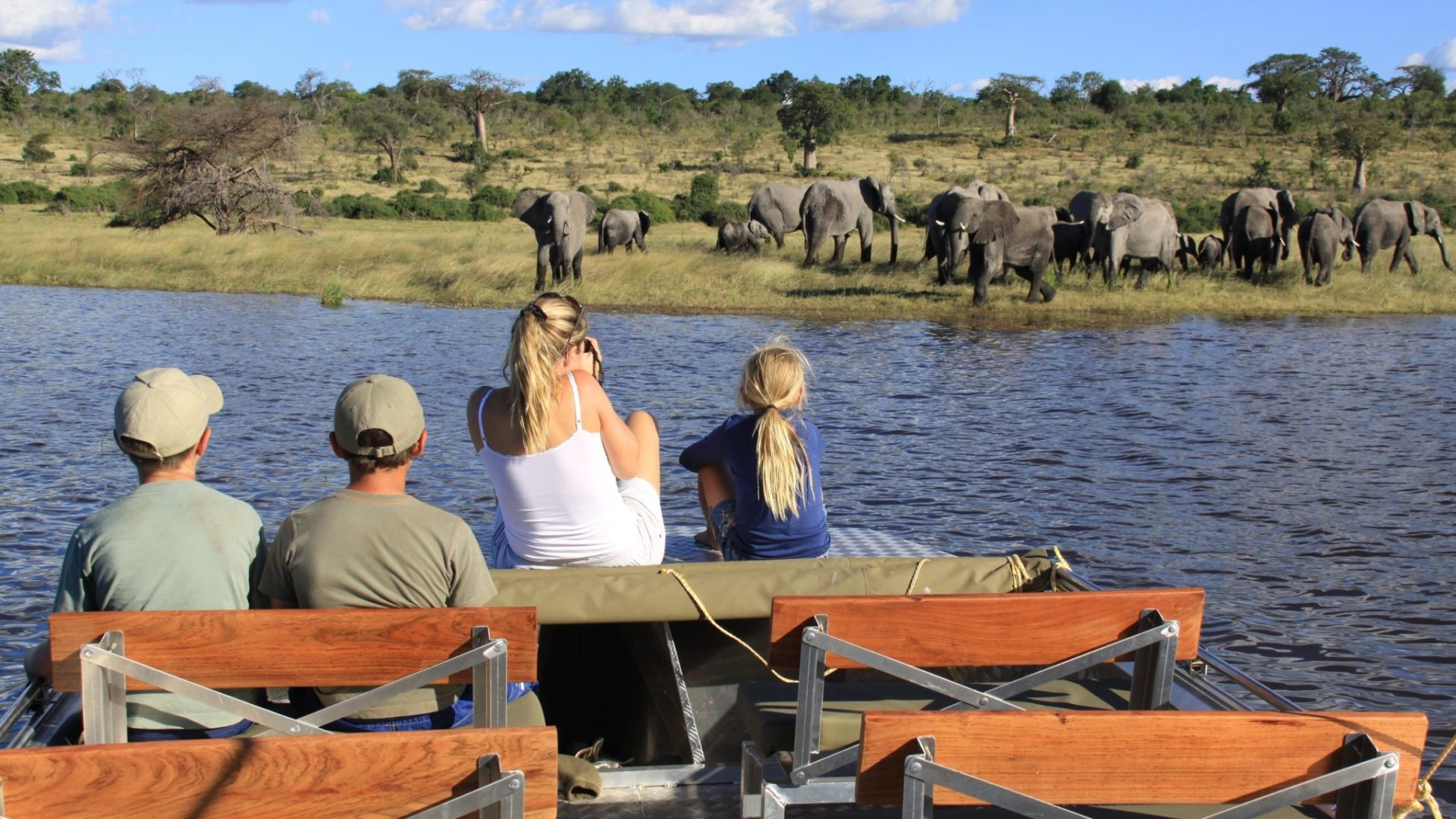 Chobe River Camp elephant viewing