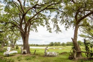 botswana okavango delta camp moremi bush brunch