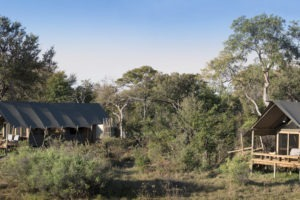 botswana okavango delta sable alley tents