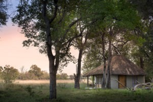 khwai bush camp botswana african bush camps accomodation 87