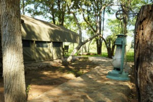 selati tented camp south africa tent