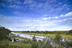 kirkmans camp sabi sands south africa game drives