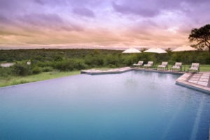 kirkmans camp sabi sands south africa pool