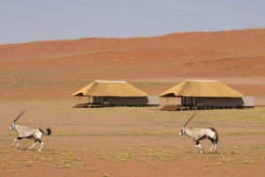 5Kwessi Dunes Bedroom exteriors and oryx