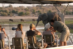 namibia chobe river pangolin voyager house boat photography 6