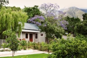 south africa garden route Schoone Oordt Country House 2