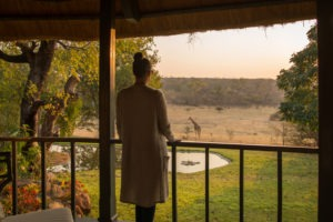 zimbabwe victoria falls stanley and livingstone boutique hotel 16