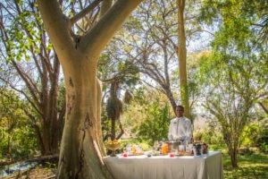 zimbabwe victoria falls stanley and livingstone boutique hotel 18