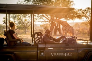 zimbabwe victoria falls stanley and livingstone boutique hotel 23