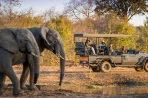 zimbabwe victoria falls stanley and livingstone boutique hotel 24