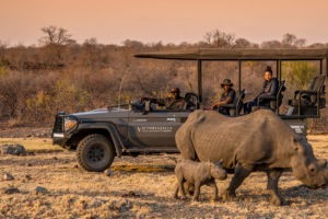 zimbabwe victoria falls stanley and livingstone boutique hotel 25