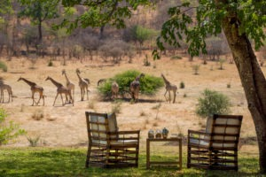 zimbabwe victoria falls stanley and livingstone boutique hotel 34