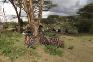 Kenya masai mara mountain biking riding cycling big57