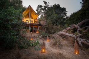 zambia south luangwa chikoko tree camp walking safaris 8