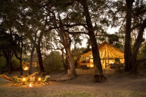 zambia south luangwa crocodile river camp walking safaris 12