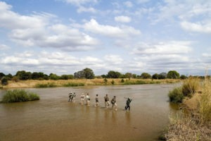 zambia south luangwa national park mobile walking safaris 15
