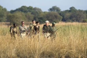 zambia south luangwa national park mobile walking safaris 16