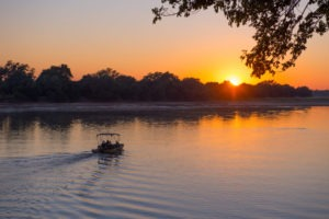 zambia south luangwa national park river journeys emerald season 13