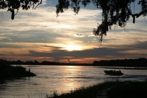 zambia south luangwa national park river journeys emerald season 17