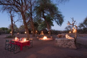 Northern Tuli Game Reserve Mohave 03