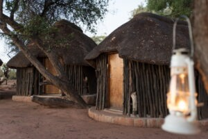 Northern Tuli Game Reserve Mohave 07